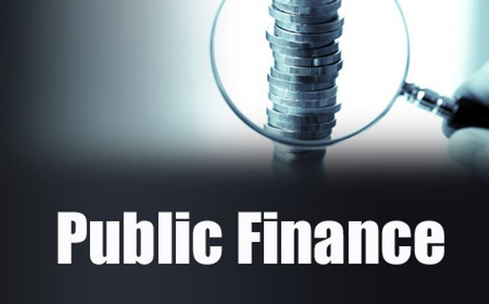 functions and objectives of public finance